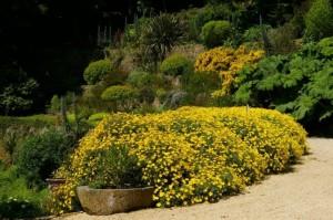 jardin du kestellic