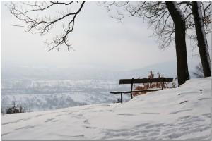 Vue sur la plaine d'Alsace / View of Alsace land