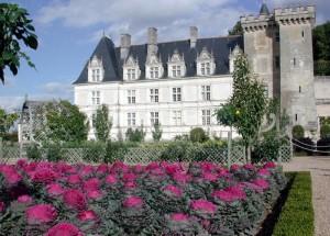 chateau jardins villandry potager 11 800x575 300x215 Château de Villandry