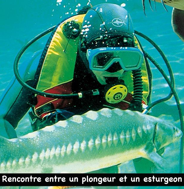 Aquarium du Périgord Noir (24)