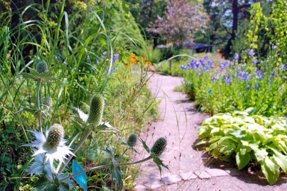 Jardin Botanique de Saverne