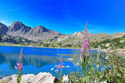 Alpes-de-Haute-Provence (04)